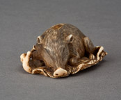 Netsuke of a boar <b>(SOLD)</b>